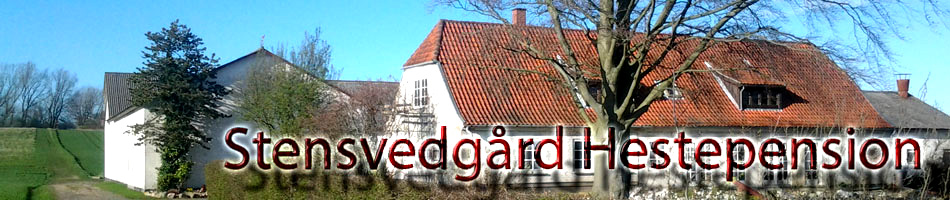 Stensvedgård Hestepension
